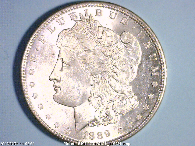 Collecting United States Morgan Silver Dollars.